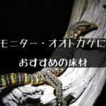 【モニター・オオトカゲにおすすめの床材】