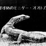 【ペットにおすすめのオオトカゲ・モニター5種類を紹介】~飼いやすい?飼育しやすいトカゲは?~