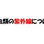 【爬虫類の各生体における紫外線について】~トカゲ・ヘビ・カメ・ヤモリ~