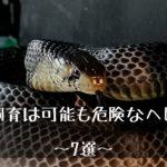 【毒蛇以外で飼育は可能だが危険なヘビ(蛇)~7選~】